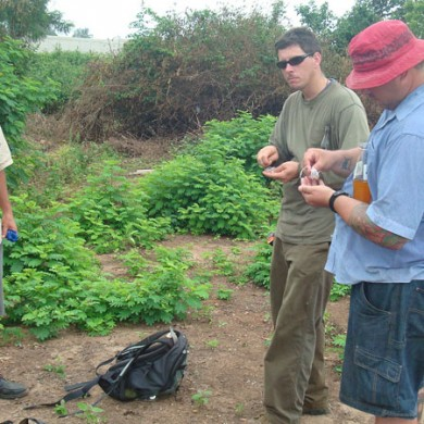 Tom Becker, Tom Butler and Curtis in the field